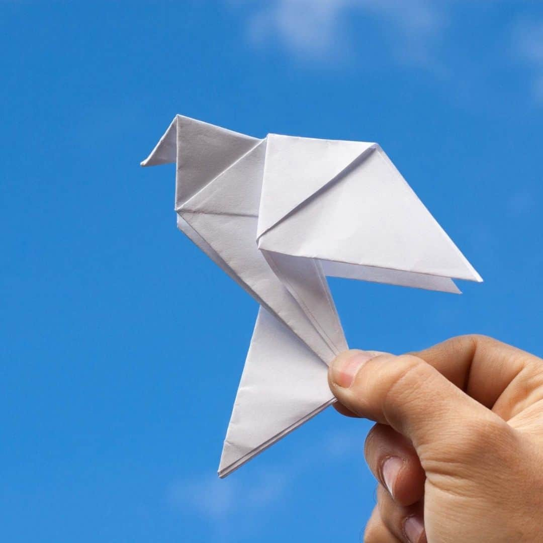 Origami dove workshop
